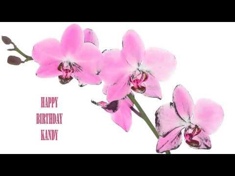 Kandy   Flowers & Flores - Happy Birthday