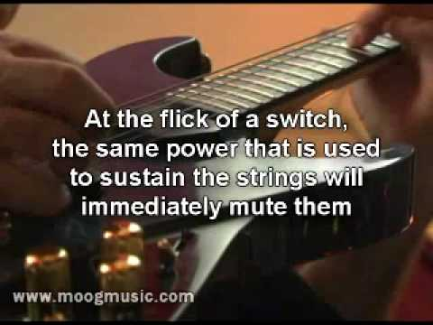 Introducing The Moog Guitar