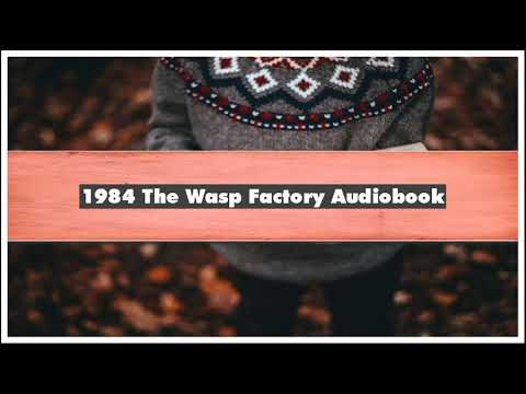 Iain Banks -1984 The Wasp Factory Audiobook