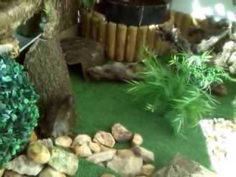 Tortuguero artesanal youtube - Estanque para tortugas ...
