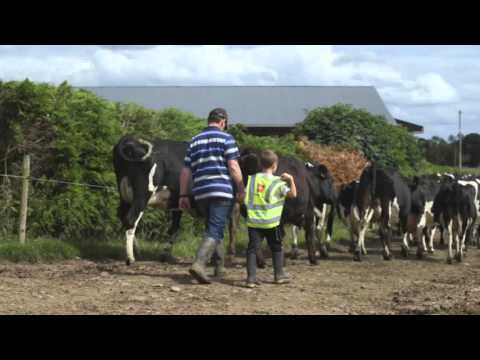 Kerrygold Farmer Family - Andrew Gow, Co. Limerick
