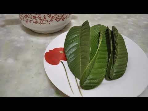 Chá da folha