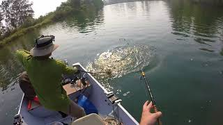 Snohomish River Pink Salmon with Elgin Fishing 8/29/2017