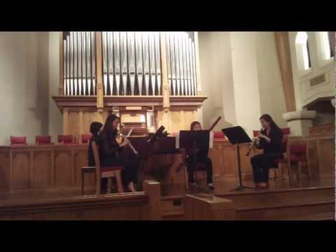 Jan Dismas Zelenka, Trio Sonata No. 5 (2 and 3 movements.)