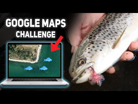 Sea Trout Google Maps Challenge - Fishing New Waters For Summer Sea Trout!