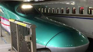 東北新幹線 E5系 2018 年 1月 10日 東京駅