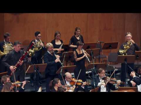 Mozart - Sinfonia Concertante in Es-Dur, KV 297b - Schwarzwald Kammerorchester