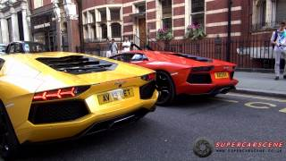 Lord Aleem TERRORIZES London! [Full Video]