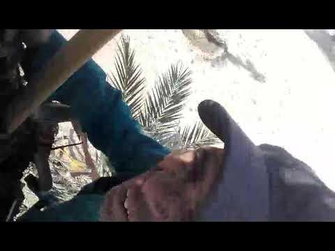 شاهد قبل الحذف. زنطور مقهور. لن تندم شاهد الفيديو إلى اخر