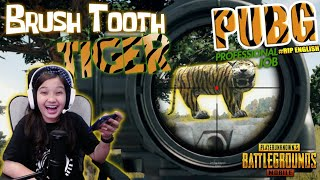 #NAYGAME | PUBG Profesional Brush Tooth Tiger