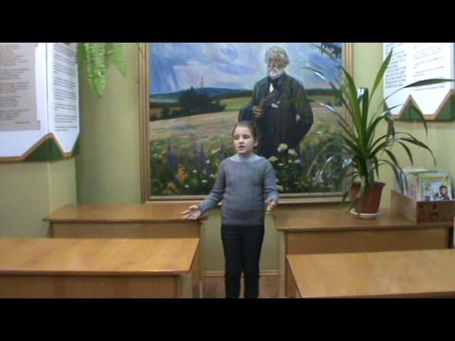 Изображение предпросмотра прочтения – АнастасияРучкина читает произведение «Зеркало и обезьяна» И.А.Крылова