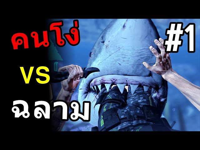 ตำนานคนโง่ VS ฉลาม ชะชะช่า #1