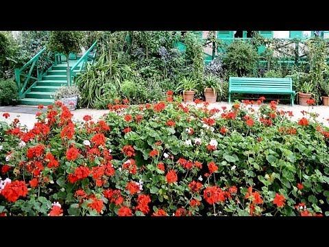 Beautiful flower garden - France, Giverni - Claude Monet House