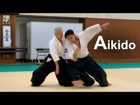 Aikido Demonstration 2019 - Shirakawa Katsutoshi shihan