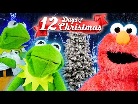 Elmo and Kermit The Frogs 12 Days Of Christmas ft Cookie monster! Song