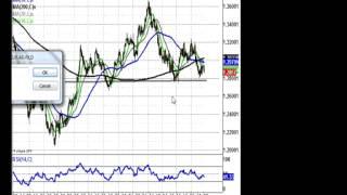 Zak Mir - Euro and Gold Charts