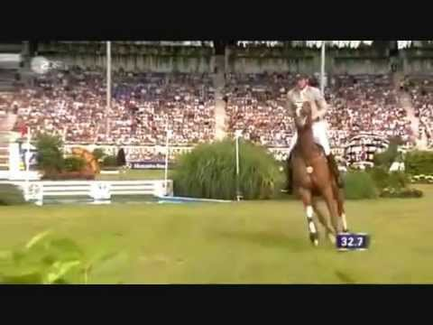 Horse Jumping Pferde Springen
