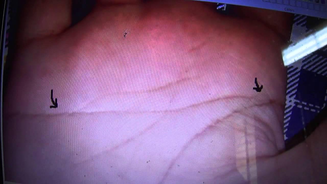 Simian line palmistry tony blair tony bliar - Simian Line Palmistry Tony Blair Tony Bliar 19