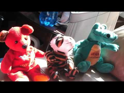 Megan guillot singing with stuffed animals