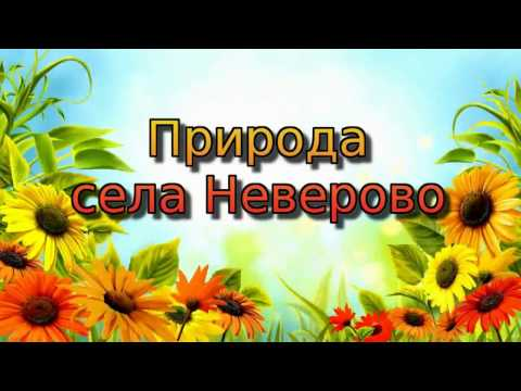 Природа села Неверово.