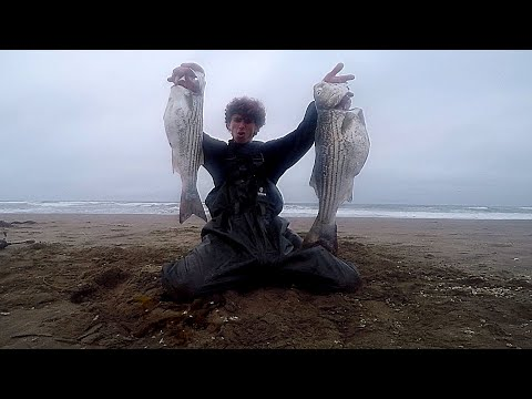 BIG Striped Bass LIMIT From The BEACH