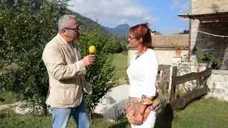 Gite les Framboiselles - Castellane