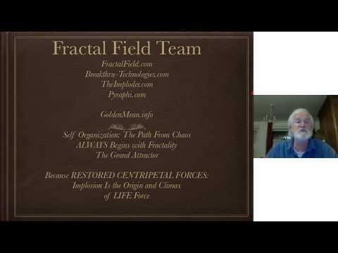 BioActive Fields and Spiritual Science with Dan Winter