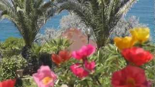 Camping Villaggio BAIA DEL SOLE -  Isola del Giglio