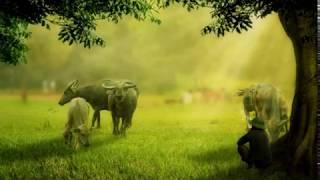 Kecapi suling - Sundanese music of West Java - Stafaband