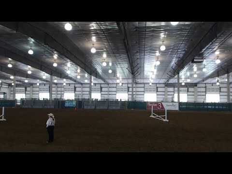 4-H Horse Hunter Hack Jumper Show at 2020 Lancaster County Super Fair