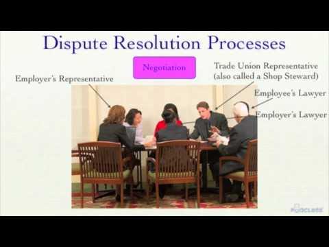 dispute resolution process in union and non union organization