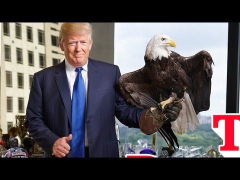 6 Reasons Why You Should Include American Silver Eagles in Your Portfolio:Donald Trump Finance Stock