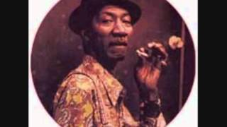 HOUND DOG TAYLOR -  GIVE ME BACK MY WIG