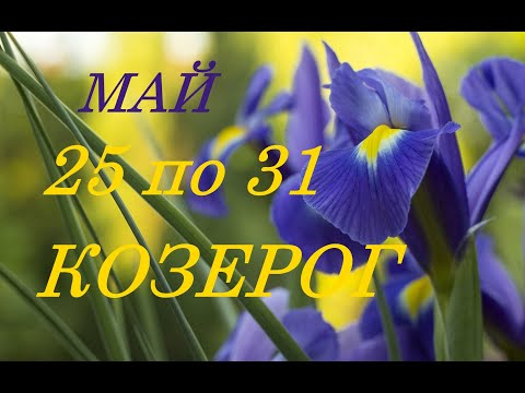 КОЗЕРОГ. ТАРО-ПРОГНОЗ на НЕДЕЛЮ с 25 по 31 МАЯ 2020 г.