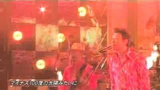 桑田佳祐/南方之星  真夏の果実STUDIO LIVE  中文字幕