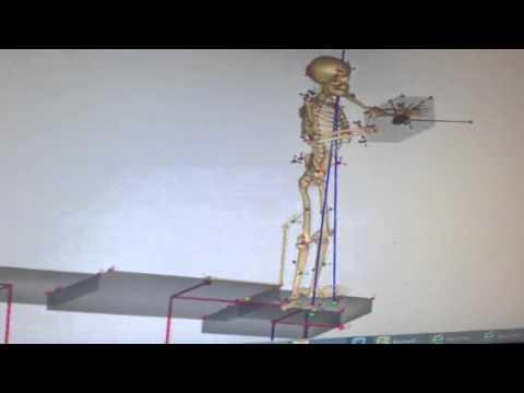 Anybody university of miami box lifting model