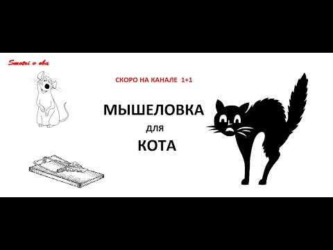 Мышеловка для кота (сериал 2019) смотреть 1 2 3 4 5 6 7 8 9 10 11 12 серию