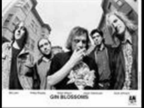 Gin Blossoms- Until I fall Away ( Acoustic Live)