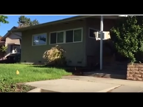 Los Angeles House Rentals 3BR/2BA by Rental Management in Los Angeles
