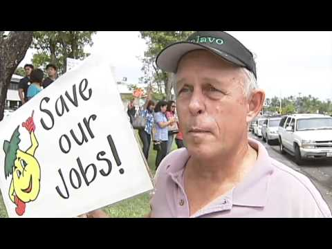 Pro-GMO rally encircles Hilo government buildings