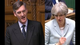 Jacob Rees-Mogg The Sole Voice of Reason in Parliament