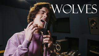 Download Selena Gomez, Marshmello - Wolves (Cover by Alexander Stewart) MP3 song and Music Video