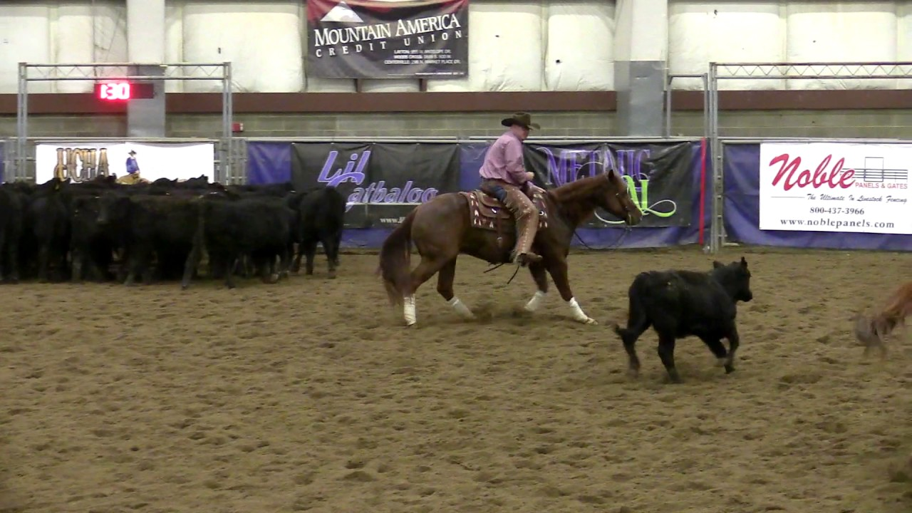 Rittle Me This - Adam Pollard - Non Pro Derby Go 1, UCHA 2016 Farmington