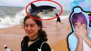 The Craziest Shark Attack Stories In The World!