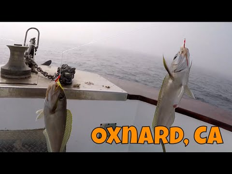 CHARTER BOAT FISHING, LOADS OF OCEAN WHITEFISH!!! Nonstop Action, Hook's Landing In Oxnard, CA C: