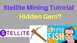 Stellite Mining Tutorial - Hidden Gem?