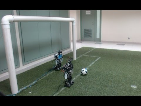 Goalkeeper Robot using Deep Neural Network