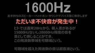聞こえる?超音波(・∀・)ゆんゆん【ニコニコ動画-逆輸入】