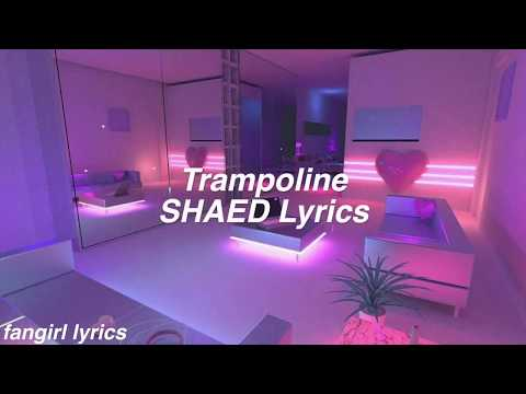 Trampoline || SHAED Lyrics Mp3