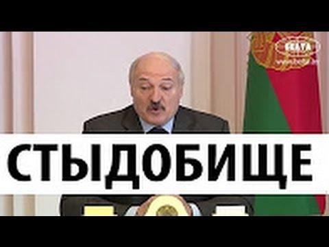 НУ И НОВОСТИ! Лукашенко в шоке от Беларуси! Что происходит в стране